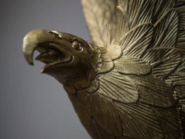 eagle-roosevelt2